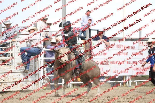 BLY18_Bulls- 0113