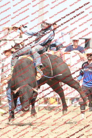 BLY18_Bulls- 0008