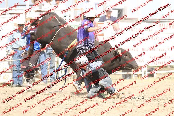 BLY18_Bulls- 0017