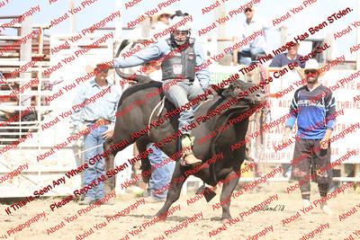 BLY18_Bulls- 0010