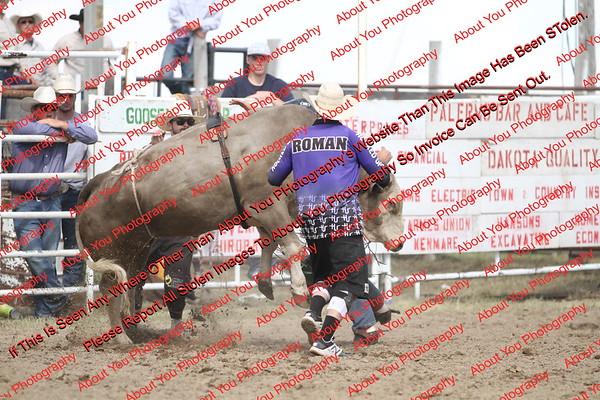BLY18_Bulls- 0130
