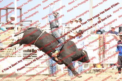 BLY18_Bulls- 0007