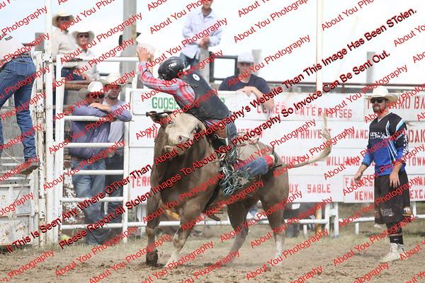 BLY18_Bulls- 0120