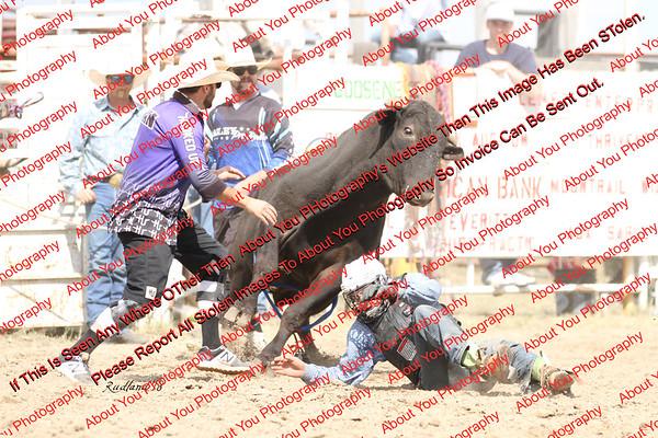 BLY18_Bulls- 0016