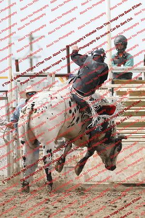 BLY18_Bulls- 0042
