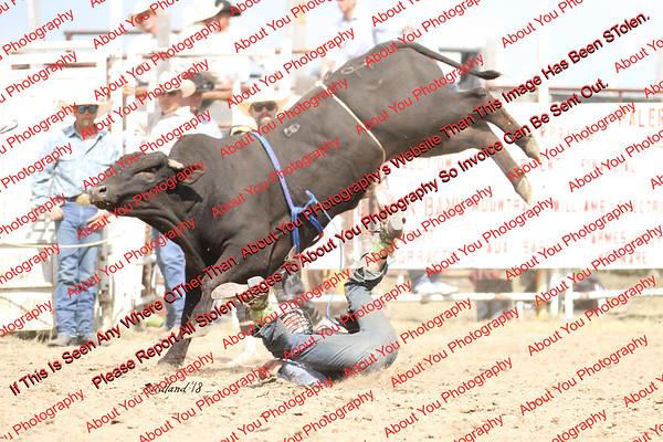 BLY18_Bulls- 0014