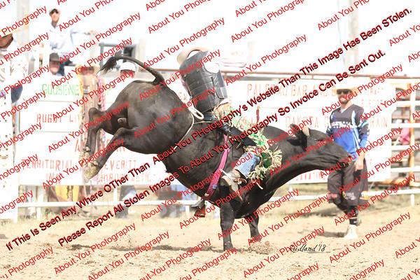 BLY18_Bulls- 0098