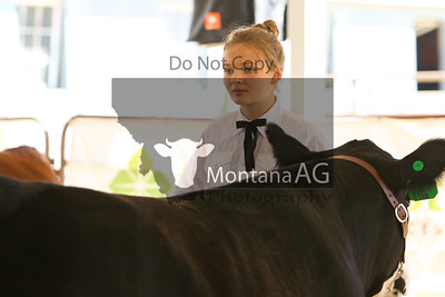 montanaag-28