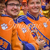 clemson-tiger-band-a&m-2018-9