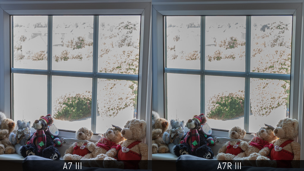 sony a7iii vs a7riii photo comparison