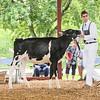 CTState18_Holstein-0519