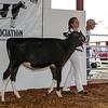 CTState18_Holstein-0514