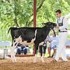 CTState18_Holstein-0520