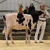 EOWQ18-Holstein-6589