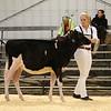 EOWQ18-Holstein-6583