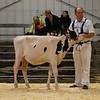 EOWQ18-Holstein-6591