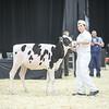 QuebecSpring18_Holstein-0073