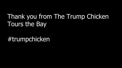 Trump Chicken Tour of the Bay - Mickey Souza