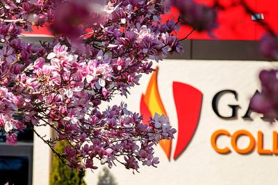 GWU Spring 2018
