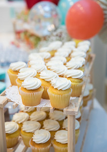 Spring 2018_Gives_Baby Shower_Long Island-1822