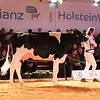 HolsteinVision18Ho-8701