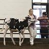ILSF_Holstein18-2797