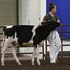 ILSF_Holstein18-2799