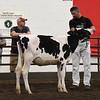 ILSF_Holstein18-2801
