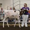 ILSF_Holstein18-2796