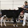 ILSF_Holstein18-2794