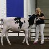 ILSF_Holstein18-2802