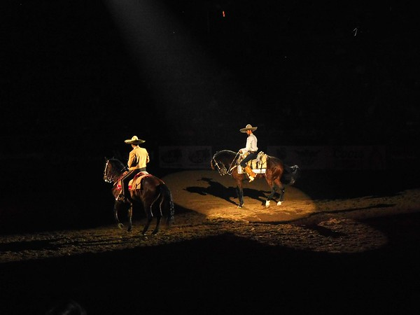 Domenicos at the National Western Stock Show 2018 January