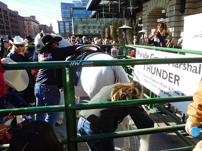 National Western Stock Show Parade at Union Station in Denver 2018 January 4