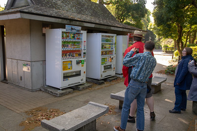 We meet Japanese vending machines