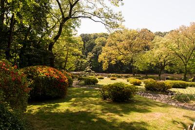 Meji shrine inner gardens