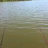 BOBBER FISHING FOR CRAPPIES & BLUEGILLS