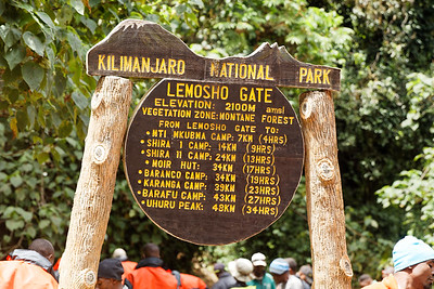 Kilimanjaro Ascent Day 2 - Forest Camp