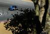 California 8 Hours - Intercontinental GT Challenge - Mazda Raceway Laguna Seca - 22 Automatic Racing Aston Martin Vantage GT4, Charlie Putman, Charles Espenlaub, Eric Lux
