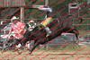 Mad18_SatPerf_Bulls-  0011