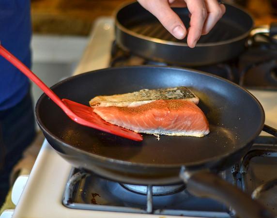 MET 043018 Salmon