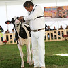 MexicoHolstein18-1M9A9915