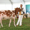 MexicoHolstein18-1M9A9928