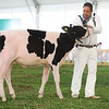 MexicoHolstein18-1M9A9925
