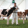 MexicoHolstein18-1M9A9921
