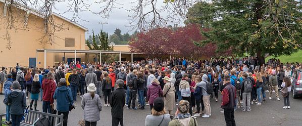 Tam and Redwood Walkout (47 of 91)-Pano