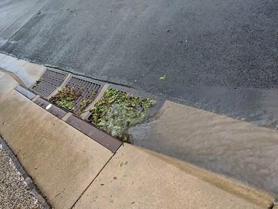 Hail storm going down the drain