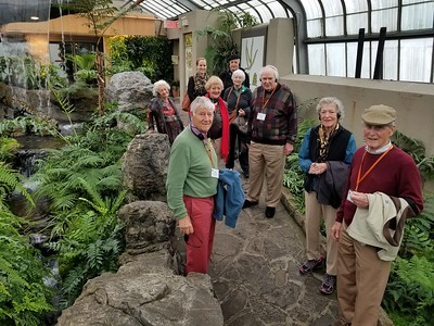 In the greenhouse, Montreal Botanical Gardens - Cathy Phillips