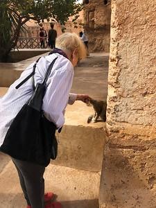 Kristen makes a new friend at the Badi Palace