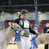 NYSpring18_BrownSwiss-1776