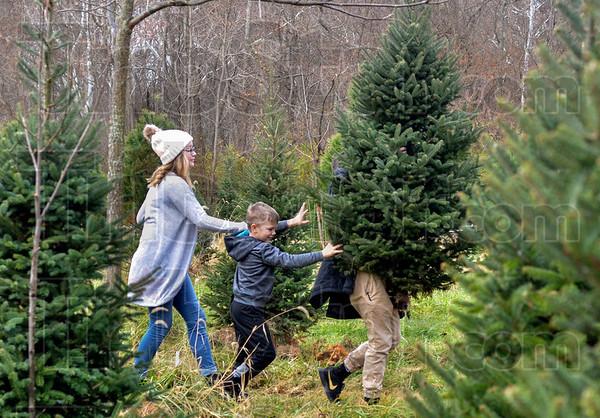 MET 112518 Coleman Tree Carry